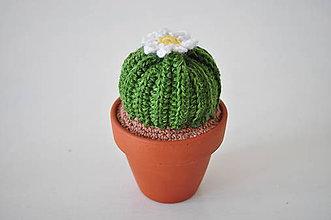 Dekorácie - Kaktus Ester - 7805501_