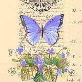 - motýlik - 7806512_