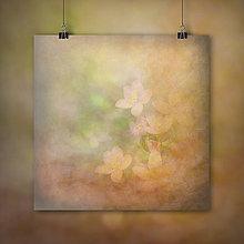 Grafika - JAR (JARNÁ JEMNOSŤ fotoplátno 60x60 cm) - 7808370_