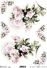 Papier - Ryžový papier R 747 - 7820158_