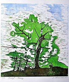 Grafika - Strom - grafika - trojfarebný linoryt - zelený... - 7821408_
