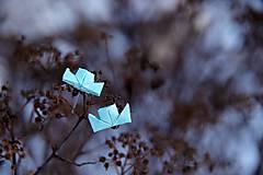 Náušnice - Parníčci ledoví - 7841215_
