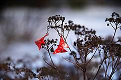 Náušnice - Motýlci - berušky - 7841888_