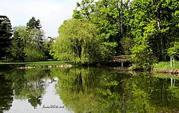 Fotografie - Zrkadlenie - 7840011_