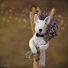 Pierka - Bulteriér a levanduľa - pierko pre ženícha podľa fotografie - 7845323_