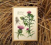 Obrazy - Tlač A4  Pichliač - Cirsium, akvarel - 7846570_