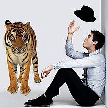Dekorácie - (2617f) Nálepka na stenu - Tiger - 7852222_