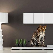Dekorácie - (2620f) Nálepka na stenu - Gepard - 7852320_