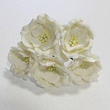 Papier - Papierové kvety - magnolia biele 5ks - 7851898_