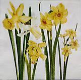 - kvety 08 - 7855324_