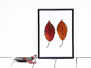 Obrázky - Obrázok z lisovaných rastlín - list jesenný II. - 7868239_