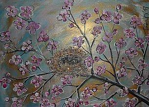 Obrazy - Na kvitnúcom konáriku - 7873743_