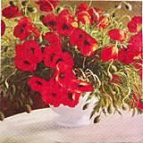 - kvety 37 - 7879247_