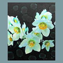 Obrazy - Čemeřice II - olejomalba na plátně - 7877401_