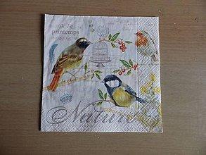 Papier - Nature - 7879077_