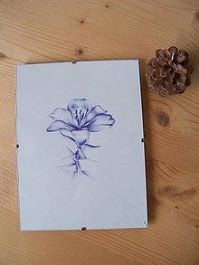 Kresby - Perokresba : Ľalia kvet - 7882389_
