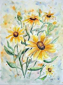Obrazy - Mini-slnečnice (24 x 32) - 7893332_