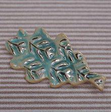 Odznaky/Brošne - Keramická brošňa s platinou - Lístok - 7919835_