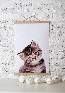 Grafika - Print na plátne CAT A2 farebná verzia - 7921738_