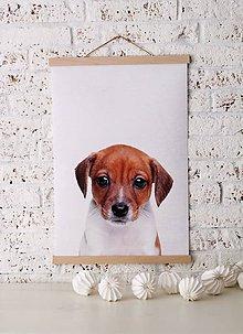 Grafika - Print na plátne DOG A2 farebná verzia - 7921761_