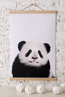 Grafika - Print na plátne PANDA A2 farebná verzia - 7921865_