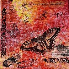 Obrazy - Západ slnka medzi motýľmi.. - 7930920_