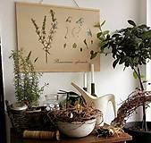 Kresby - Retro botanický plagát - rozmarín - 7936013_