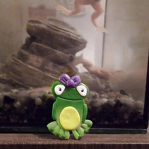 Žabka - magnetka