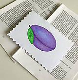Papiernictvo - Minipohľadnica - slivka  - 7946458_