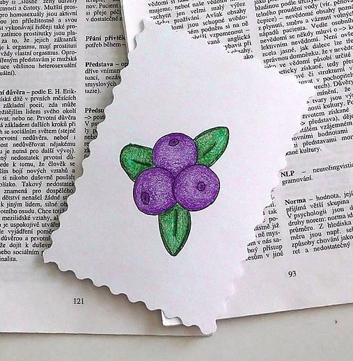 Minipohľadnica - čučoriedky