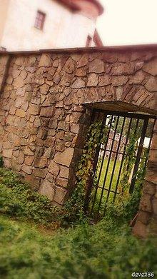 Fotografie - Nenápadná - 7951018_