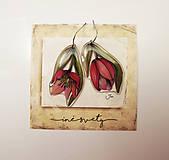 - ..tulipánové.. - 7964762_