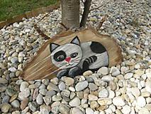 Eben pekná mačička