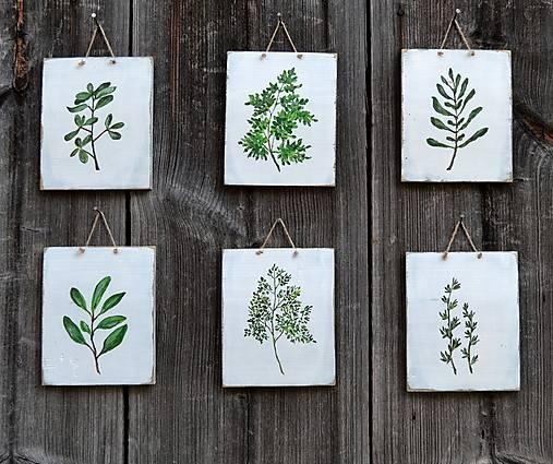 Obrázky - Drevené obrázky-sada s rastlinami - 7987218_