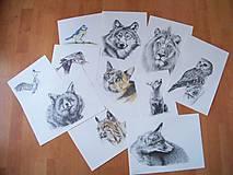 Printy: Zvieratá
