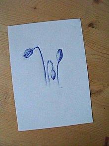 Kresby - Kresba: Vlčí mak pučí - 7993813_