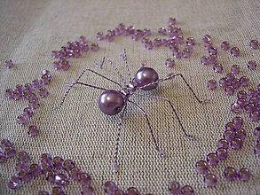 Dekorácie - Pavúk - 8000951_