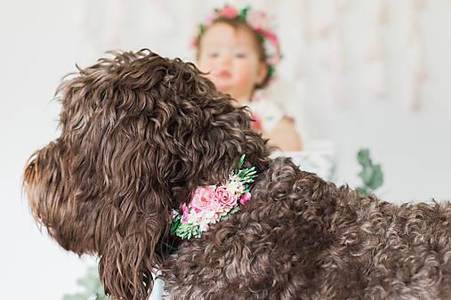 """Kvetinový obojok pre psa """"jarné vábenie"""""""