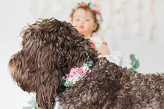 Pre zvieratká - Kvetinový obojok pre psa