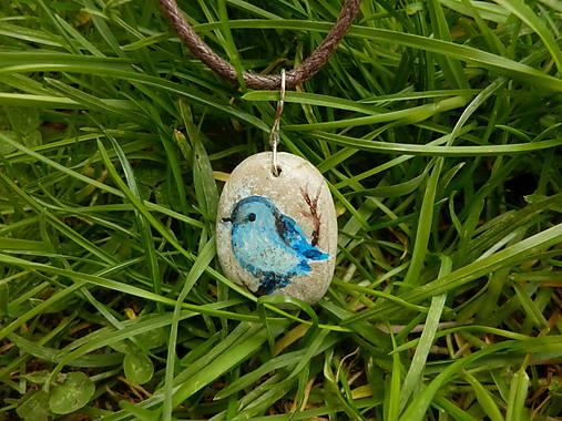 Modrý vtáčik na vetvičke