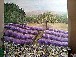 Obrazy - Lavender country - 8052579_