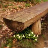 Fotografie - Lavička - 8052565_