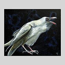 Obrazy - Bílá vrána III - olejomalba na plátně - 8054001_