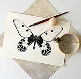 Kresby - Motýľ - Cressida cressida - 8057209_