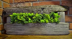 Suroviny - Islandský aranžérsky mach (stredne zelená)- Island moss - 8065550_