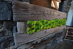Suroviny - Islandský aranžérsky mach (machovo-zelená)- Island moss - 8065657_