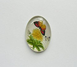 Komponenty - Kabošon - 18x25 mm - sklenený - púpava, motýľ, pampeliška - 8068783_