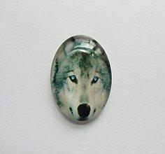 Komponenty - Kabošon - 18x25 mm - sklenený - vlk,  modré oči, divočina, husky - 8069626_