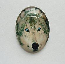 Komponenty - Kabošon - 30x40 mm - sklenený - vlk, husky, modré oči, pohľad - 8079150_
