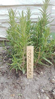 Dekorácie - Označovače na bylinky - 8090102_
